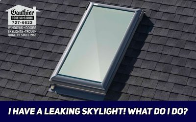 I Have A Leaking Skylight! What Do I Do